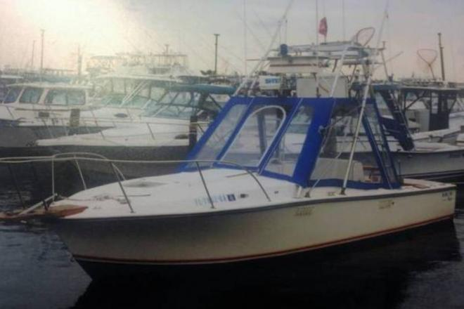 1987 Blackfin Sport Fisherman - For Sale at Bay Shore, NY 11706 - ID 109506