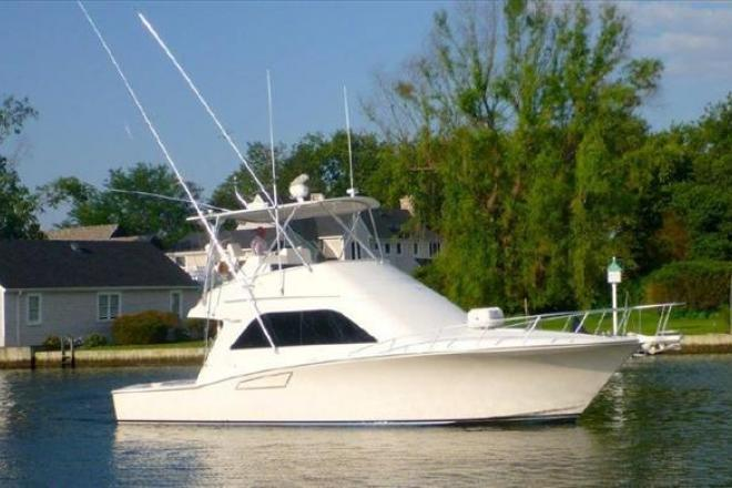 2008 Cabo (Mint! Low Hours!) - For Sale at Bay Shore, NY 11706 - ID 110392