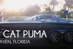 2013 Bass Cat Puma