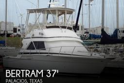 1988 Bertram 37 Sportfisherman