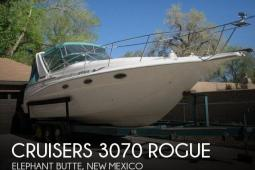 1994 Cruisers 3070 Rogue