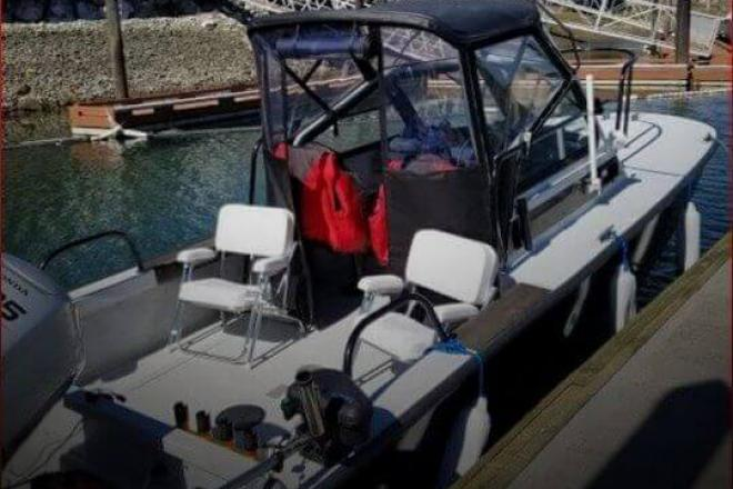 1991 Boston Whaler 25 Guardian Sentry - For Sale at Ferndale, WA 98248 - ID 93905
