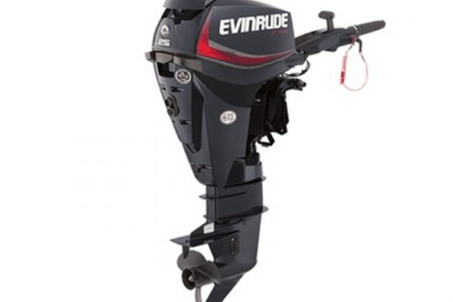 2016 Evinrude E25DGTEAF - For Sale at Stapleton, AL 36578 - ID 121127