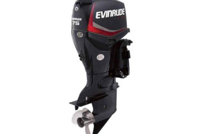 2016 Evinrude E75DPGLAF - For Sale at Stapleton, AL 36578 - ID 121132