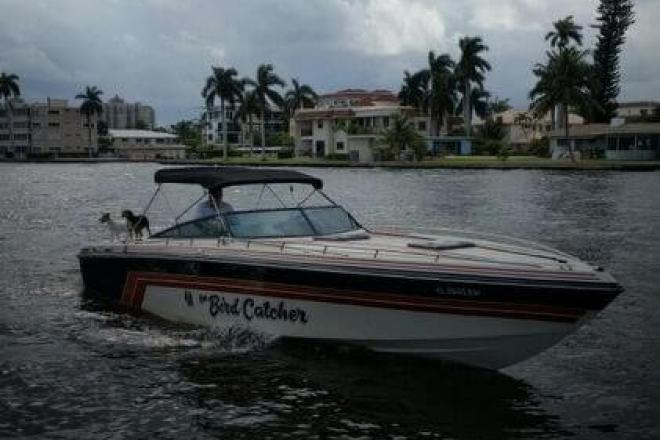 1985 Baja Force 320 - For Sale at Pompano Beach, FL 33062 - ID 132278