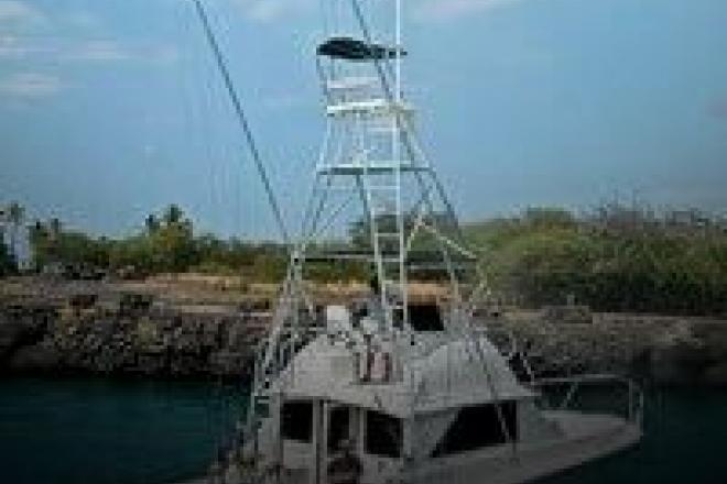 1972 Bertram 38 - 2007 Engine and Rebuild - For Sale at Kailua Kona, HI 96740 - ID 103538