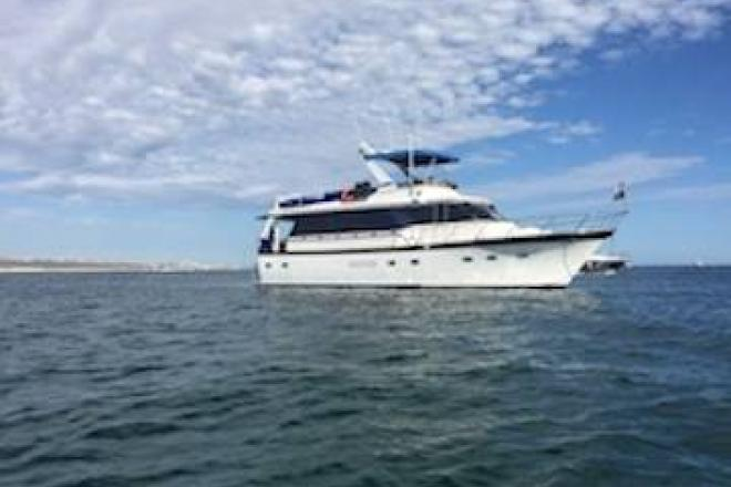 1992 Defever /Sharp Wide Body - For Sale at San Diego, CA 92109 - ID 148729