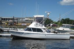 1975 Bertram 31 Flybridge Cruiser