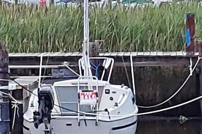 1981 Daysailer 20 - For Sale at Titusville, NJ 8560 - ID 189910