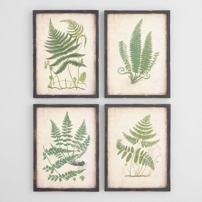 traditional fern prints for summer decor idea