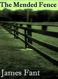 The Mended Fence by James Fant