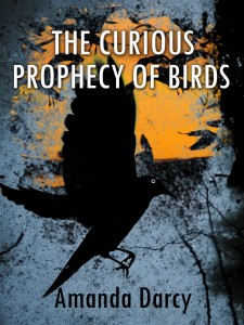 The Curious Prophecy of Birds by Amanda Darcy @darcyphotos