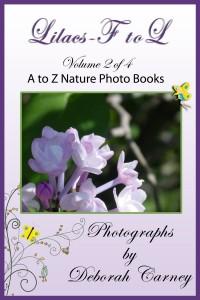 Lilacs F – L by Deborah Carney