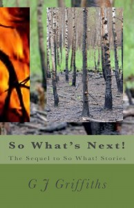 Buyer's Guide: So What's Next! by G J Griffiths
