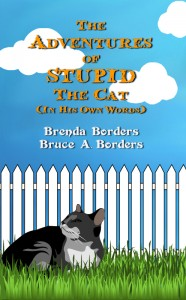 The Adventures Of Stupid The Cat by Bruce A. Borders