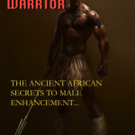 Mandingo Warrior: The Ancient African Secrets To Male Enhancement by Mr. Mandingo