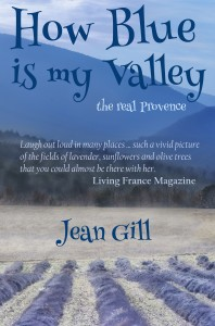 Buyer's Guide: How Blue is my Valley by Jean Gill