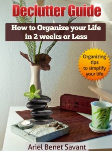 Declutter Guide: How to Organize your life in 2 weeks or less. Organizing tips to simplify your life by Ariel Benet Savant