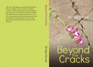 Beyond the Cracks by Bridget Straub
