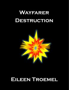 Wayfarer Destruction by Eileen Troemel