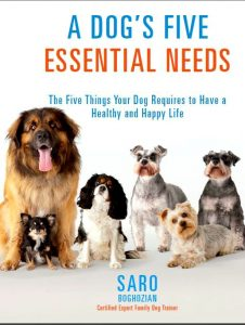 A Dog's Five Essential Needs by Saro Boghozian