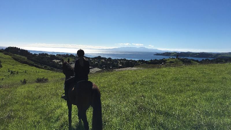 Guided farm trek with breath taking views over Waiheke Island, the Hauraki Gulf and beyond