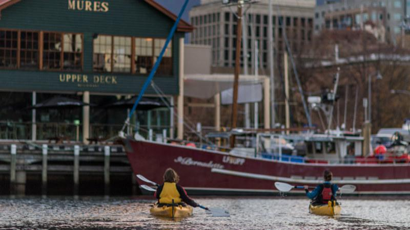 There's no better way to explore Hobart's picturesque habourside than by Kayak!