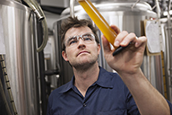 Brewer examining beer sample