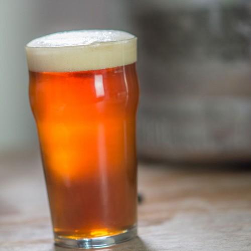 Brewers Association Export Development