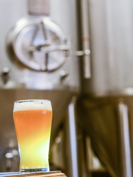 6 Educational Resources to Keep your Brewery in Check