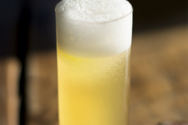JanFeb19 The New Brewer Gose