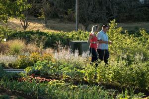 Gardening Class @ Brooks Wines   Amity   Oregon   United States
