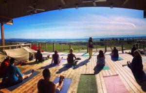 Yoga with Sky @ Brooks Winery Tasting Room | Amity | Oregon | United States