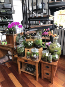 Terrarium Class @ Brooks Wines | Amity | Oregon | United States