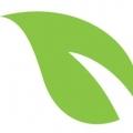 Nimble Sage Group