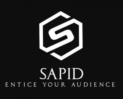Sapid Agency New York City Seo Company