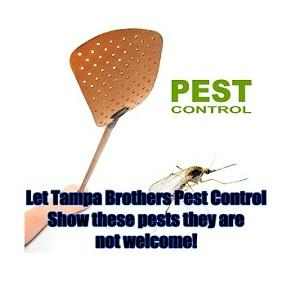 Tampa Brothers Pest Control