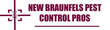 New Braunfels Pest Control Pros