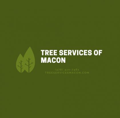 Tree Services of Macon