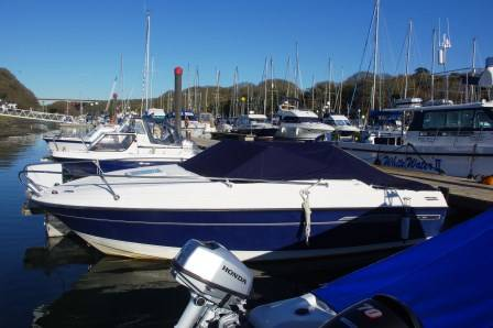 The 2006 Bayliner Discovery 192