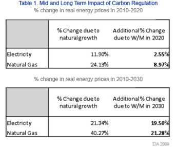 Mid and Long-term Impact of Carbon Regulation