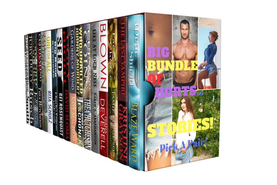 The BIG BUNDLE OF SHORTS...STORIES! Bundle