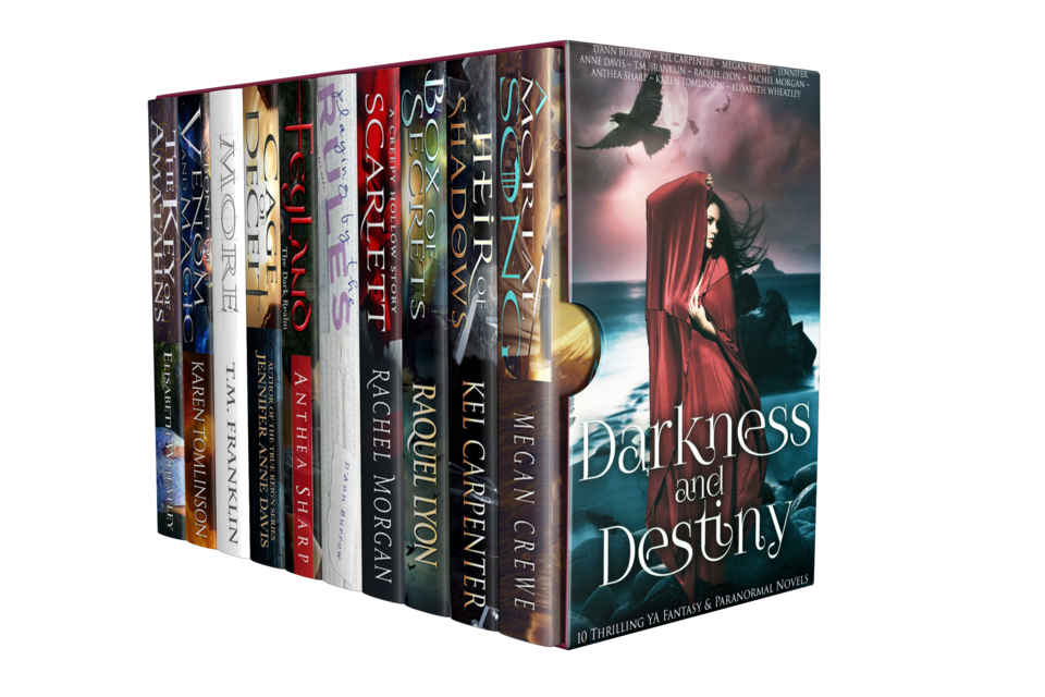 The Darkness and Destiny Bundle