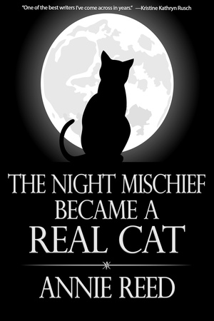 The Night Mischief Became a Real Cat