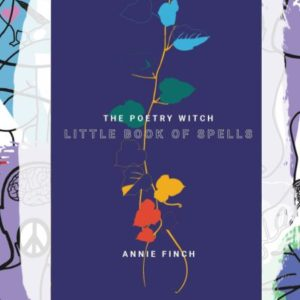 Busboys Books Presents: The Poetry Witch Little Book of Spells by Annie Finch