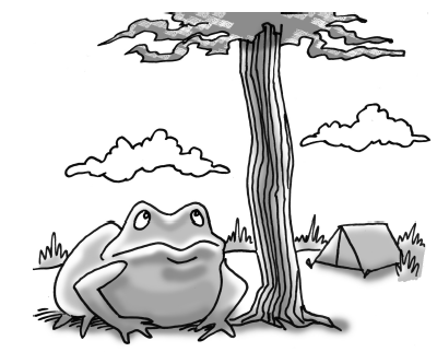 3-53 Frog under the tree