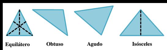 El triángulo equilátero tiene 3 segmentos de recta punteados, uno desde cada vértice. El triángulo isósceles tiene un segmento de recta punteado desde el vértice superior. Los triángulos obtusángulo y acutángulo no tienen segmentos de recta punteados.