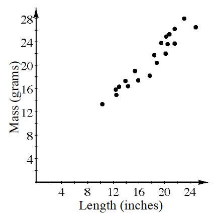 A scatterplot for length in inches on the x axis and mass in grams on the y axis where the points are clustered  follow a line from left to right. Your teacher will provide you with a model.