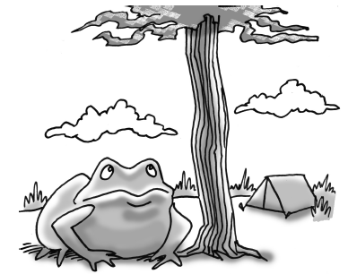 Frog under a tree with a tent in the background