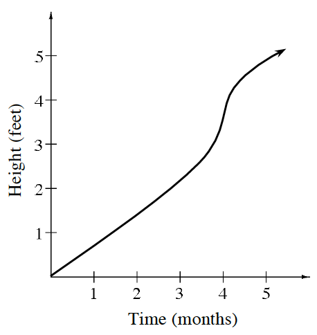 First quadrant, x axis labeled, time, months, y axis labeled height, feet, Curve starting at the origin, increases straight passing through the point (3, comma 2), at approximate point (3.5, comma 2.5), curve opens up, changing to opening down at the approximate point (4, comma 4), passing through (5, comma 5), continuing up & right.